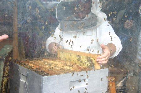 Fabriquera Miel à La maison de Payrac