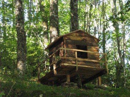 Tu veux t'amuser : cabanes sont dans les bois : à toi de les découvrir !